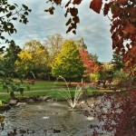 autumn colours on trees, fountain and lake