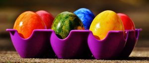 An Easter tradition: coloured Easter eggs in an egg tray